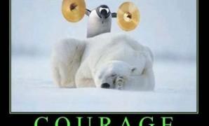 10 مقولات لتكن شجاعا وناجحا